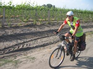 Sasvim nenamerno vozimo kroz vinograde