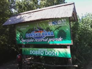 SRP Carska bara (foto Miki Lalić)