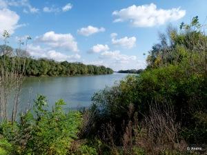 Reka Tisa (foto Goran Andrić)