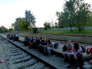 Čekajući voz za Suboticu (foto Goran Andrić)