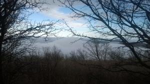 Maglovito jutro na Homolju